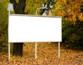 Empty billboard in autumn forest — Stock Photo