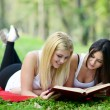 Two girls reading book in park — Stock Photo