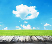 Fresh spring green grass with blue sky and wooden floor — Foto Stock