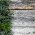 árvore de Natal em uma placa de madeira — Foto Stock