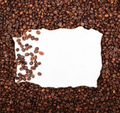 Empty vintage paper on coffee beans background — Stock Photo