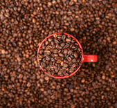 Red cup of coffee on coffee beans background — Foto de Stock