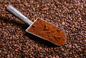 Grinded coffee in vintage scoop on beans — Stock Photo