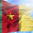 Cameroon waving flag against blue sky with sunrays — Stock Photo