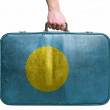 Stock Photo: Tourist hand holding vintage leather travel bag with flag of Pal