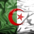 Algeriwaving flag — Stock Photo #39839251