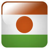 Glossy icon with flag of Niger — Stock Photo