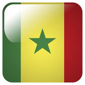 Glossy icon with flag of Senegal — Stock Photo