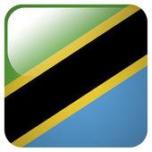 Glossy icon with flag of Tanzania — Stock Photo