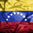 Venezuelwaving flag — Stock Photo #39849229