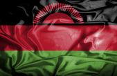 Malawi waving flag — Stock Photo