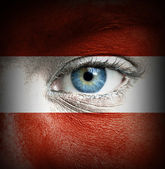 Human face painted with flag of Austria — Stock Photo