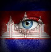 Human face painted with flag of Cambodia — Stock Photo
