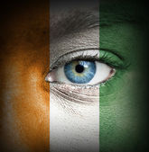 Human face painted with flag of Ivory Coast — Stock Photo