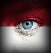 Human face painted with flag of Monaco — Stock Photo