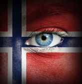 Human face painted with flag of Norway — Stock Photo