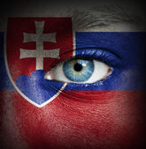 Human face painted with flag of Slovakia — Stock Photo
