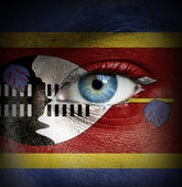 Human face painted with flag of Swaziland — Stock Photo