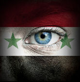 Human face painted with flag of Syria — Stock Photo