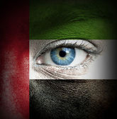 Human face painted with flag of United Arab Emirates — Stock Photo