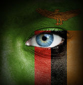 Human face painted with flag of Zambia — Stock Photo
