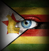 Human face painted with flag of Zimbabwe — Stock Photo