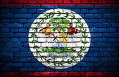 Ziegelmauer mit gemalten flagge von belize — Stockfoto