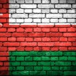 Brick wall with painted flag of Oman — Стоковое фото