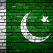 Brick wall with painted flag of Pakistan — ストック写真