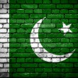 Brick wall with painted flag of Pakistan — Стоковое фото