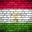 Brick wall with painted flag of Tajikistan — Stock Photo #41765539