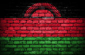 Brick wall with painted flag of Malawi — Stock Photo