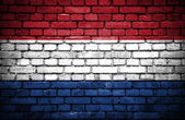 Brick wall with painted flag of Netherlands — Стоковое фото