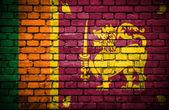 Brick wall with painted flag of Sri Lanka — Stock Photo