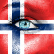 Woman face painted with flag of Norway — Stock Photo