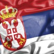 Serbia waving flag — Stock Photo #44238821