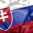 Slovakia waving flag — Stock Photo