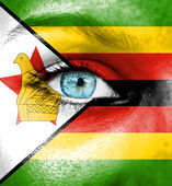Woman face painted with flag of Zimbabwe — Stock Photo