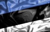 Bandiera sventolante Estonia — Foto Stock