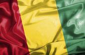 Guinea waving flag — Stock Photo