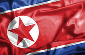 North Korea waving flag — Stock Photo