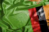 Bandiera sventolante zambia — Foto Stock