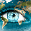 "Planet earth and blue human eye - ""Elements of this image furnis — Stock Photo #44240331"