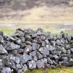 hermosa pradera verde con un viejo muro de piedra — Foto de Stock   #47726389