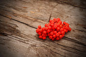 Bunch of red rowan on wooden texture — Stock Photo