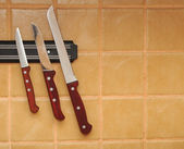A set of knifes are hanging on a kitchen wall. — Stock Photo