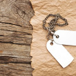 Royalty-Free Stock Photo: Blank tags with silver chain on vintage background. space for yo