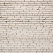 White brick wall — Stock Photo #25376193