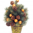 Small christmas tree - Foto Stock