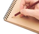 女性手に茶色のリサイクル紙を描画 — ストック写真